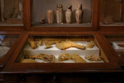 Mumifikovano meso izloženo u Egipatskom muzeju u Kairu bilo je namenjeno za ishranu kraljeva u zagrobnom životu.