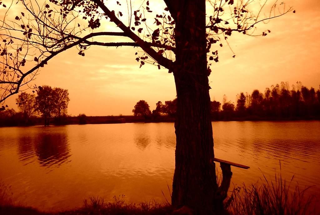 Belocrkvanska jezera, Vračevgajsko jezero
