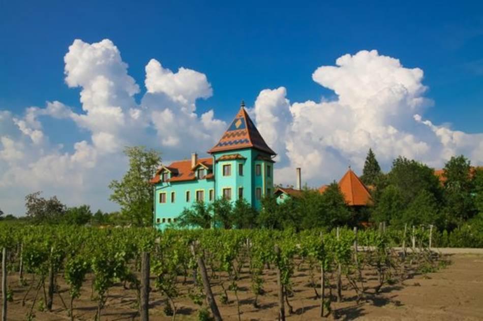 Vinarija Vinski dvor