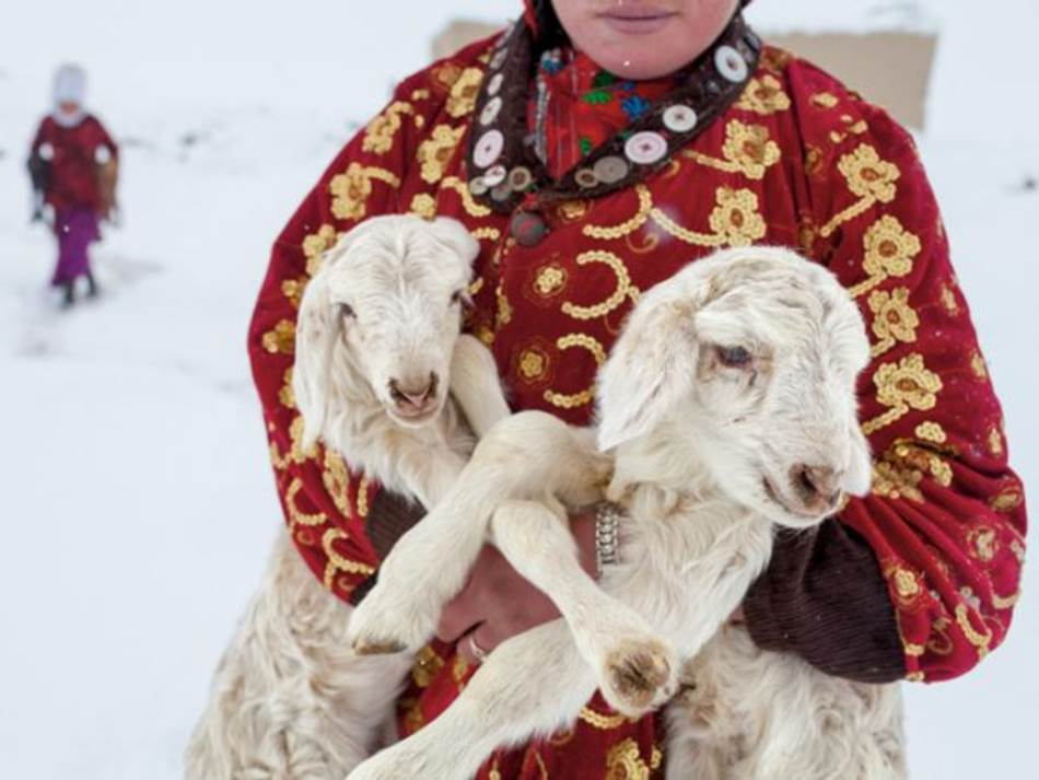 Ova devojčica nosi dva jagnjeta da provedu noć sa svojim majkama. Tokom izuzetno hladnih dana, nežne mlade životinje se zagrevaju u čojanim vrećama u kolibama stočara. Kirgizi se žale da su im zime okrutne. Ali, da li bi bilo koje drugo mesto na svetu nazvali svojim domom?