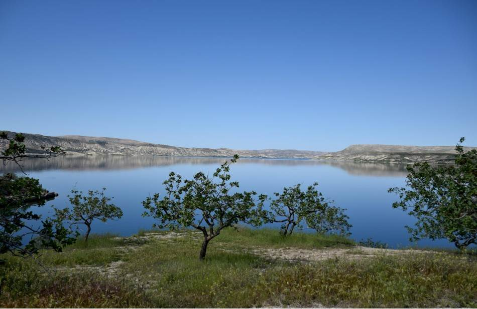 Reka Eufrat i plantaže turskog pistaća kod Gaziantepa.