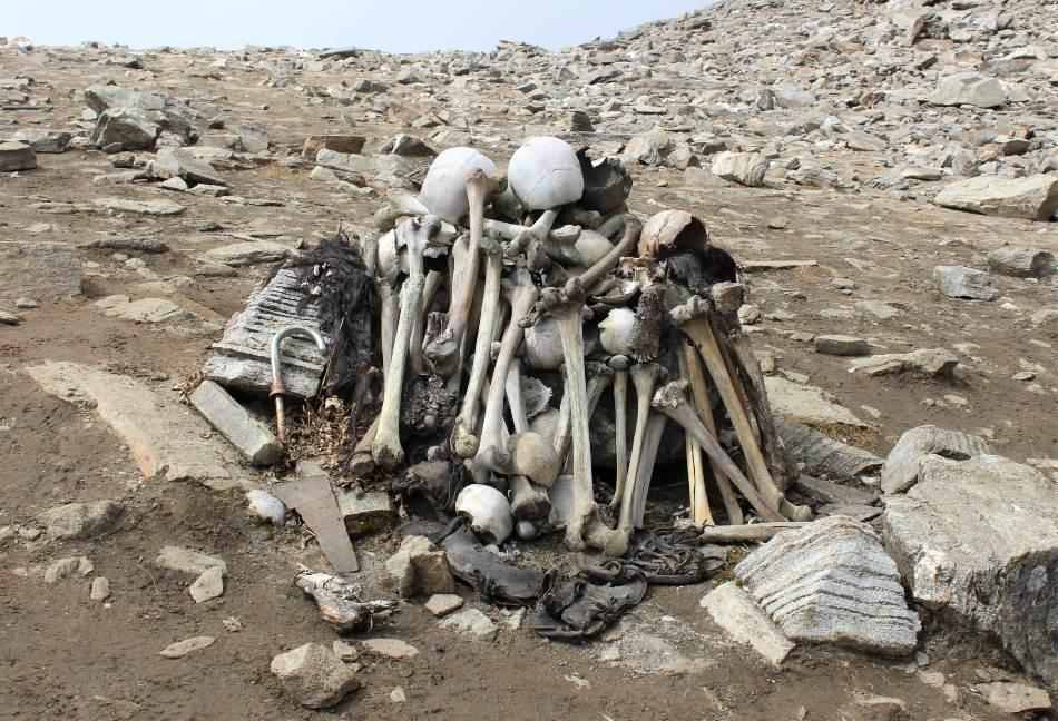 Ljudske kosti