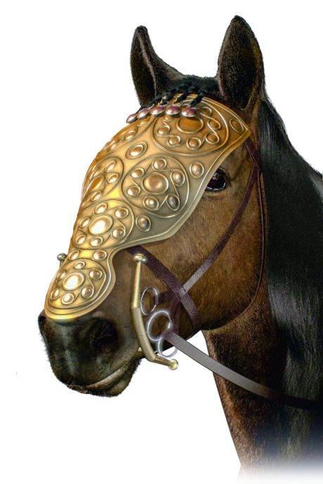 Kelti su cenili svoje konje Šamfron – maska ratnog konja – (prikazan kao digitalna rekonstrukcija) pronađen je pokraj Hojneburga u grobu žene visokog statusa.