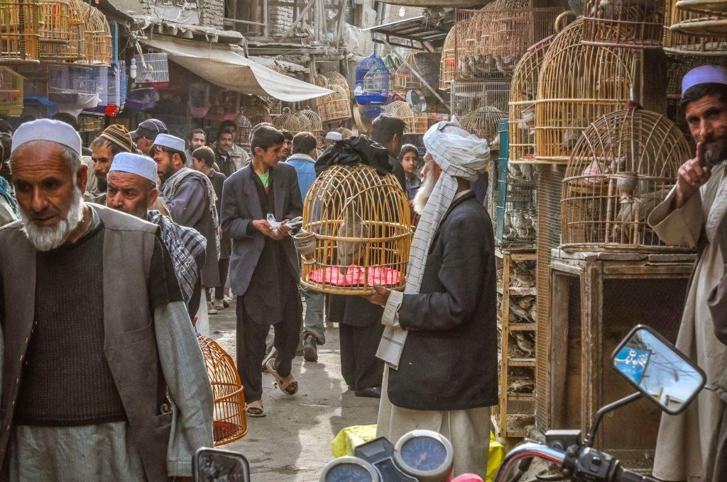 Pijaca u Kabulu, oktobar 2011. godine.
