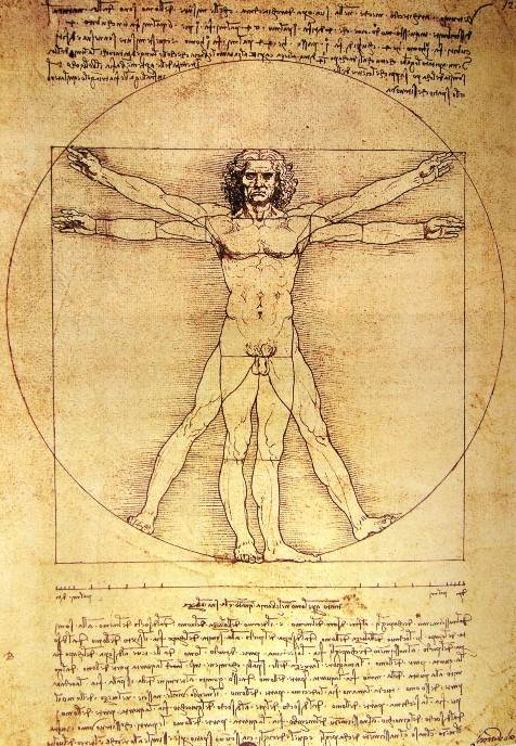 Vitruvijev čovek, Leonarda da Vinčija